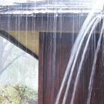 Need Rain Gutters?