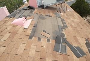Shingle Roof Repair - Before
